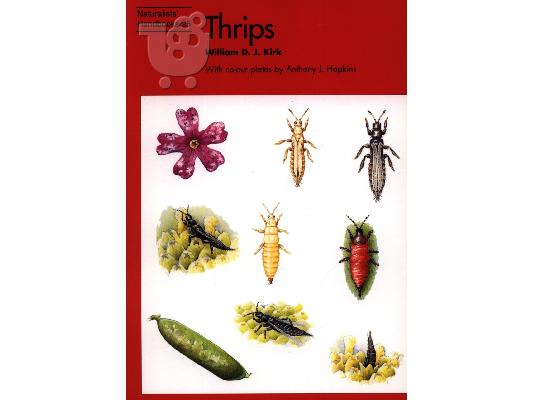 PoulaTo: Thrips: Vol. 25 (Naturalists' Handbooks) Θυσανόπτερα