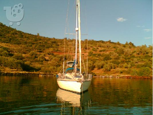 PoulaTo: ATLANTIC 31 - €25.000
